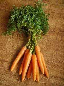 botte de carottes posée sur une table