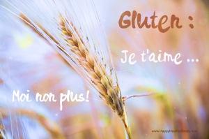 épi de blé et texte gluten je t'aime moi non plus