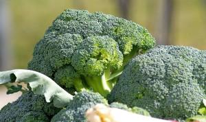 brocoli_santé_superfood_super aliment_manger équilibré