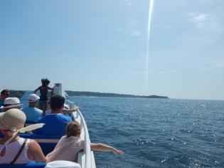 journée nature aux îles de Lerins_happyhealthysimply_03